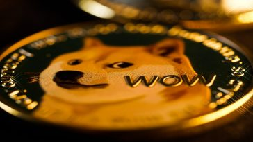 What Is Dogecoin Should You Invest In This Cryptocurrecy in 2021